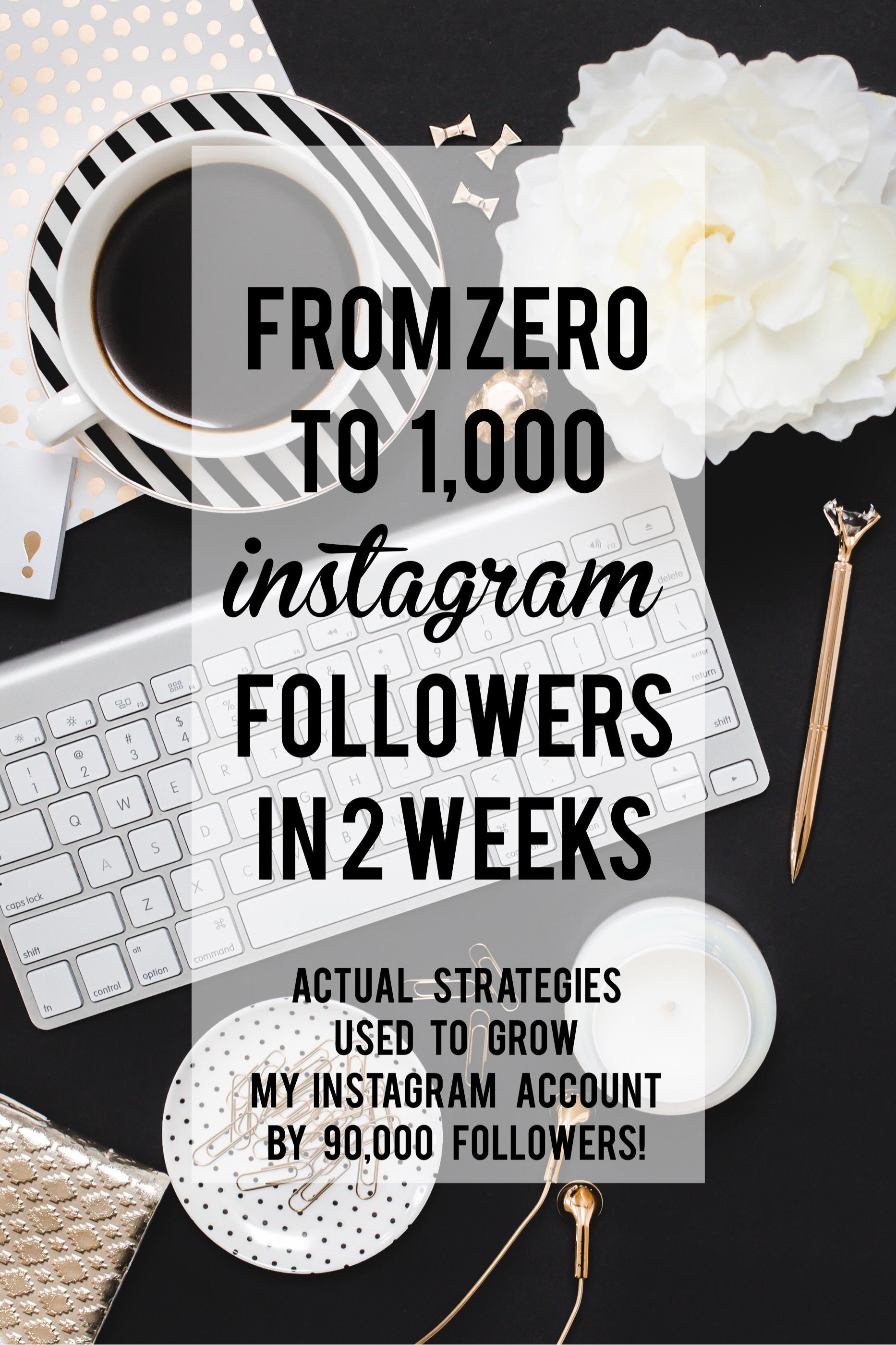 ZERO to 1000 INSTAGRAM FOLLOWERS IN 14 DAYS!